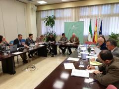 Reunión Consejo Andaluz de Consumo marzo 2020