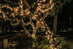 Guirnalda luces Navidad
